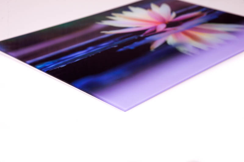 Acrylic Prints Perspex Printing South Africa Canvas